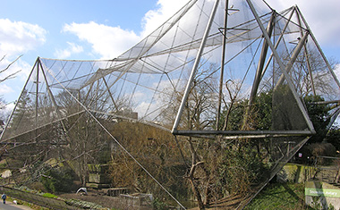 Snowdon Aviary, London Zoo